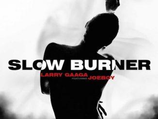 Larry Gaaga - Slow Burner Ft. Joeboy