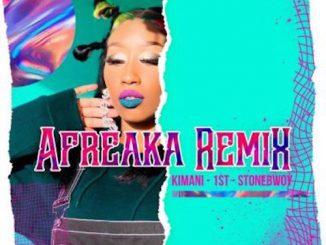 Victoria Kimani & FKI 1st Ft. Stonebwoy - Afreaka (Remix)