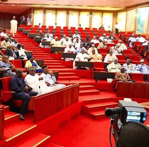 Senate moves to ease visa renewal for Nigerians abroad