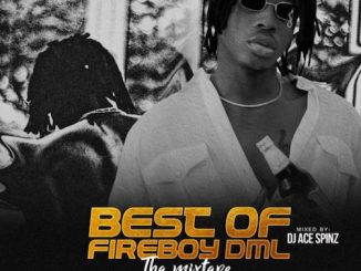 DJ Ace Spinz - Best Of Fireboy DML