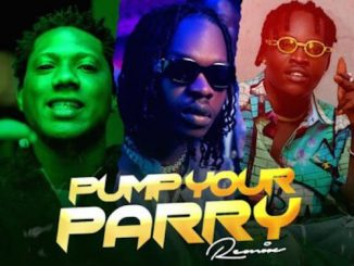 Abramsoul - Pump Your Parry (Remix) Ft. Naira Marley & C Blvck Video