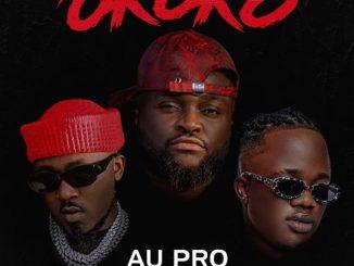 Au Pro - Okoko Ft. Ice Prince & Jamopyper
