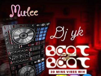 DJ YK - Beat To Beat Mixtape 30 Minutes Vibes