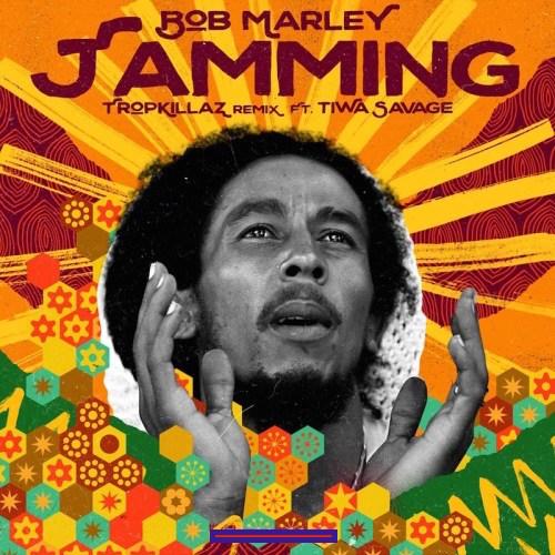 Bob Marley & The Wailers - Jamming (Tropkillaz Remix) Ft. Tiwa Savage