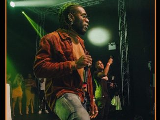 Burna Boy Gets Second Grammy Award Nomination For Twice A Tall