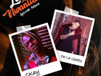 CKay Ft. De La Ghetto - Love Nwantiti (Spanish Remix)
