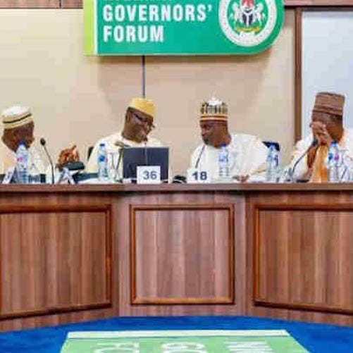 COVID-19 Palliatives Were Not Hoarded - Nigerian Governors' Forum