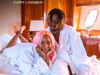 DJ Cuppy Ft. Fireboy DML -Feel Good Video