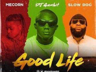 DJ Gambit - Good Life Ft. Slow Dog & Mecorn