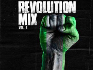 DJ Kaywise - Revolution Mix Vol. 1