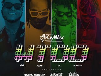 DJ Kaywise Ft. Mayorkun, Naira Marley & Zlatan - What Type of Dance