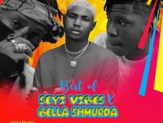 DJ OP Dot - Best Of Seyi Vibez & Bella Shmurda Mix