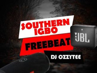 DJ Ozzytee - Southern Igbo Beat
