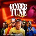 DJ Samzkid - Ginger Tune 2020 mix