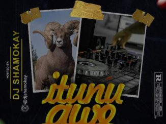 DJ Shamokay - Itunu Awe Vibez Mixtape