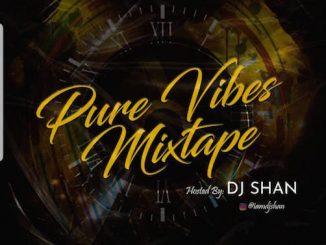 DJ Shan - Pure Vibes Mixtape