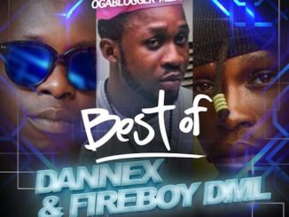 DJ Tostar - Best of Dannex & FireBoy DML Mix