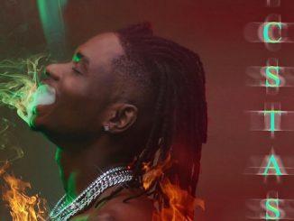 Lil Kesh Ft. Fireboy - Love Like This Video