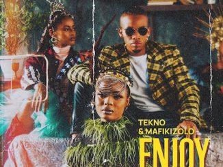 Lyrics Tekno - Enjoy (Remix) Ft. Mafikizolo
