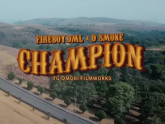Fireboy DML Ft. D Smoke - Champion Video