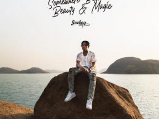 Joeboy - Show Me