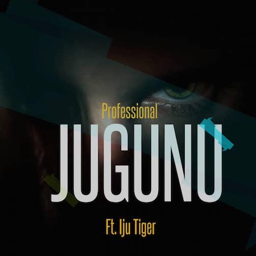 Professional Ft. Iju Tiger - Jugunu Free Beat