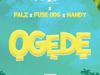 https://www.flexymusic.ng/wp-content/uploads/Krizbeatz-Ogede-artwork.jpg