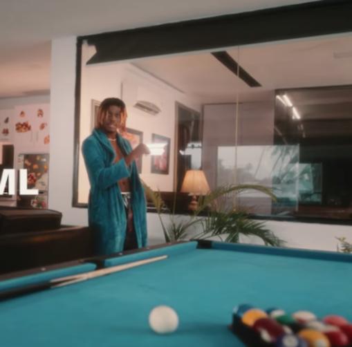 Fireboy DML - Lifestyle Video