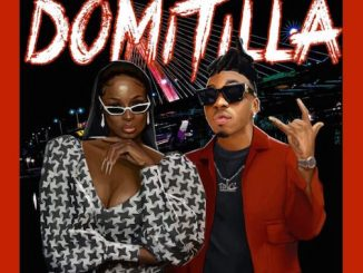 Lisa Yaro Ft. Mayorkun - Domitila