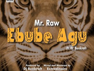 Mr Raw - Ebube Agu