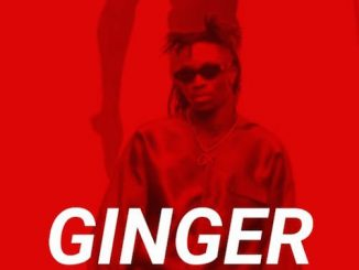 Ginger - Oxlade Type Beat (Prod. By Naira Boy)