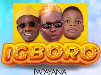 Papayana - Igboro Ft. Destiny Boy & Mr Benson