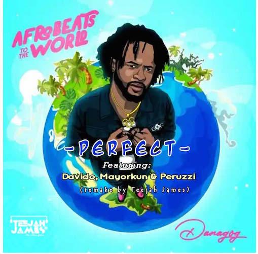 Danagog - Perfect Instrumental Ft. Davido, Mayorkun