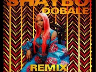Shaybo - Dobale (Remix) Ft. Bella Shmurda