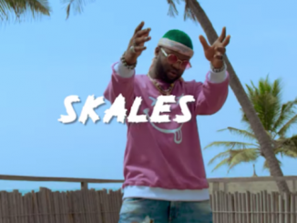 Skales - Kayefi Video