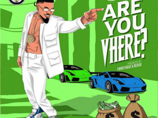 Skiibii - Are You Vhere Lyrics