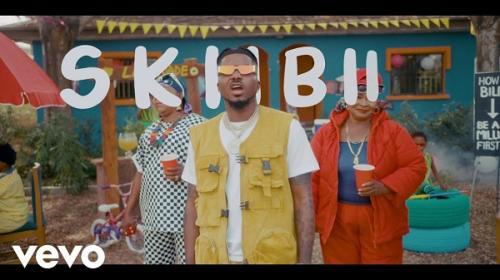 Skiibii - Are You Vhere Video
