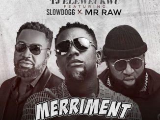 TJ Eleweukwu - Merriment Ft. Slowdog x Mr Raw