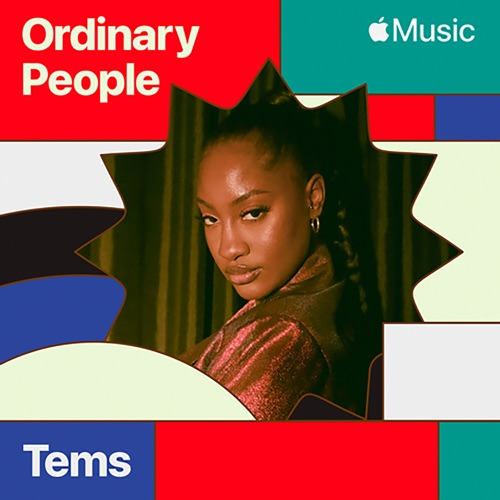 Tems - Ordinary People (Cover)