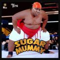 https://www.flexymusic.ng/wp-content/uploads/Teni-Sugar-Mummy-download-mp3-5467.jpg