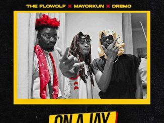 The Flowolf Ft. Mayorkun & Dremo - On A Jay