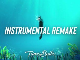 Trimz Beatz - Omah Lay (Understand) Instrumental