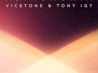 Vicetone & Tony Igy - Astronomia (Free Beat)