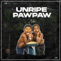 https://www.flexymusic.ng/wp-content/uploads/Zlatan-Unripe-Pawpaw.jpg