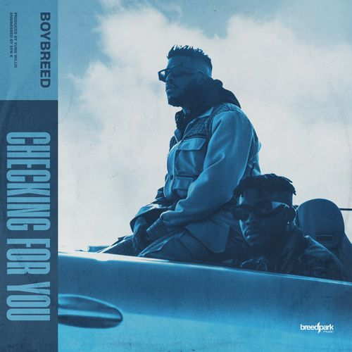 Boybreed - Checking For You